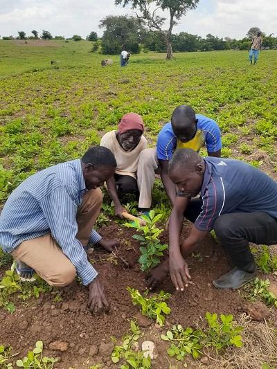 Résilience des communautés: Le CED de Namissiguima donne le bon exemple
